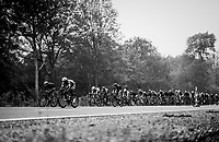the peloton<br /> <br /> 2018 Binche - Chimay - Binche / Memorial Frank Vandenbroucke (1.1 Europe Tour)<br /> 1 Day Race: Binche to Binche (197km)