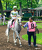 Lady Haha before The Delaware Park Arabian Oaks (grade II) at Delaware Park on 8/6/16