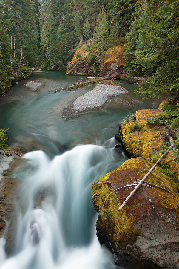 The Ohanapecosh River, Mount Rainier National Park, Washington, USA