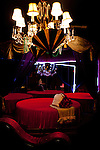 "The ""Mardi Gras"" suite at the Mustang Ranch in Sparks, Nev. November 26, 2012."
