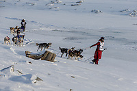 Lisbet Norris leads her team to the trail just outside Nome on  the Bering Sea with Marcelle Fressineau behind her on Saturday March 15 during the 2014 Iditarod Sled Dog Race.<br /> <br /> PHOTO (c) BY JEFF SCHULTZ/IditarodPhotos.com -- REPRODUCTION PROHIBITED WITHOUT PERMISSION