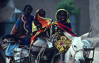 Women carrying water on donkeys