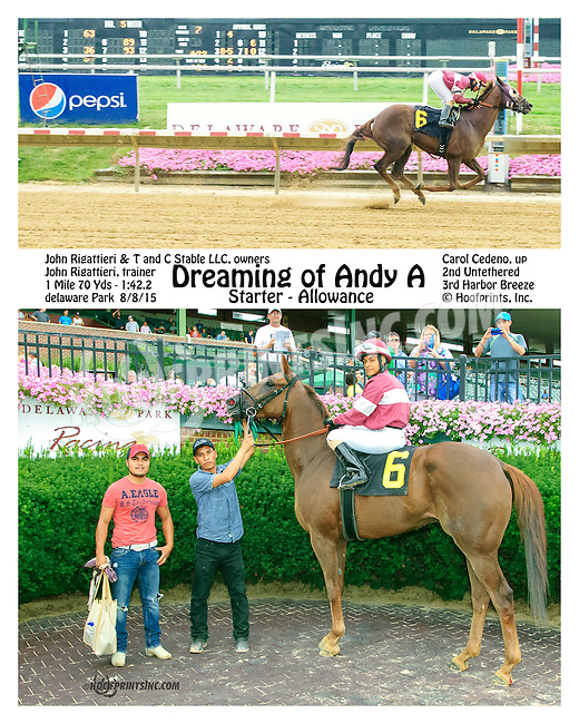 Dreaming Of Andy A winning at Delaware Park on 8/8/15
