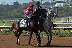 DEL MAR, CA  SEPTEMBER 1: #2 Brill, ridden by Drayden Van Dyke, in the post parade of the Del Mar Debutante (Grade 1) on September 1, 2018, at Del Mar Thoroughbred Club in Del Mar, CA.(Photo by Casey Phillips/Eclipse Sportswire/Getty ImagesGetty Images