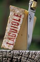 Europe/France/Auvergne/12/Aveyron/LAguiole: Fromage AOC Laguiole et couteau Laguiole-2 Appellation d'Origine Controlée