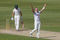 Peter Siddle of Essex celebrates taking the wicket of Joe Clarke during Worcestershire CCC vs Essex CCC, Specsavers County Championship Division 1 Cricket at New Road on 13th May 2018
