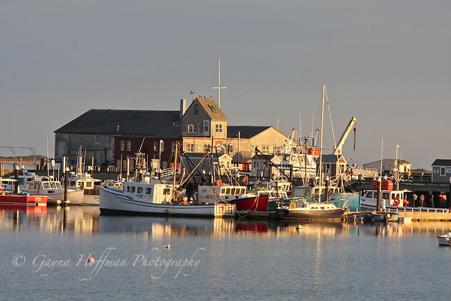 Fishing boats in the harbor. Provincetown, MA