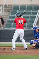 Ethan Gross (18) of the Kannapolis Intimidators at bat against the Lexington Legends at CMC-Northeast Stadium on May 26, 2015 in Kannapolis, North Carolina.  The Intimidators defeated the Legends 4-1.  (Brian Westerholt/Four Seam Images)