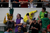 February 2nd 2019, Scottsdale, Arizona, USA; Fans on the 16th hole during the third round of the Waste Management Phoenix Open on February 02, 2019, at TPC Scottsdale in Scottsdale, AZ.