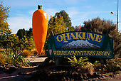 The Ohakune icon, a large carrot, Central North Island, New Zealand