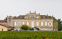 Vineyard. Chateau Le Crock, Saint Emilion. Medoc, Bordeaux, France