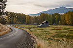 Oregon, Northeast, Enterprise, Lostine. Old barns andwinding road with autumn color.