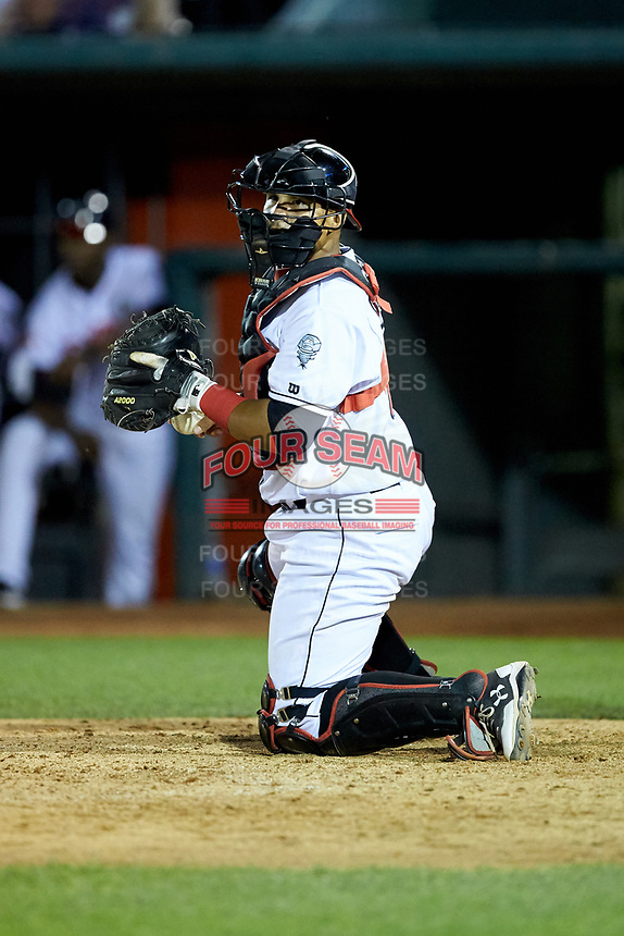 Lansing Lugnuts catcher Andres Sotillo (16) on defense against the South Bend Cubs at Cooley Law School Stadium on June 15, 2018 in Lansing, Michigan. The Lugnuts defeated the Cubs 6-4.  (Brian Westerholt/Four Seam Images)