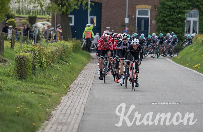 Jes&uacute;s Hern&aacute;ndez (ESP/Trek-Segafredo) pulling the peloton along<br /> <br /> 52nd Amstel Gold Race (1.UWT)<br /> 1 Day Race: Maastricht &rsaquo; Berg en Terblijt (264km)