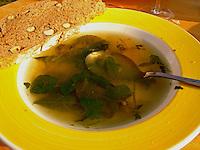 Kräuter - bzw. Wildgemüse - Suppe im Frühjahr, Kräutersuppe
