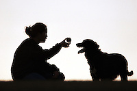 woman and her dog playing ball