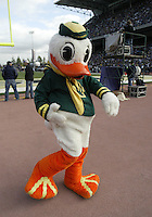 Oct 24, 2009:  The Oregon fighting duck mascot was on the sidelines entertaining Oregon Fans during the game against Washington. Oregon defeated Washington 43-19 at Husky Stadium in Seattle, Washington..