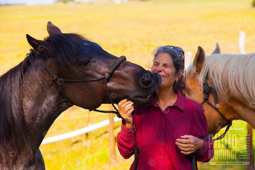 A friendly black horse shows a cowgirl affection with a big kiss, Waimea, Big Island.