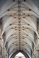 York: York Minster, Nave vaulting. Photo '90.