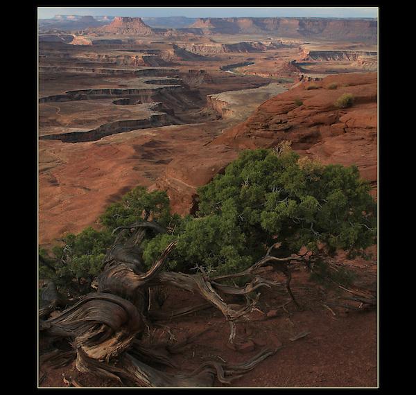 Green River overlook, Canyonlands National Park, Utah.<br /> John Kieffer offers Canyonlands National Park photo tours. Year-round Utah photo tours.