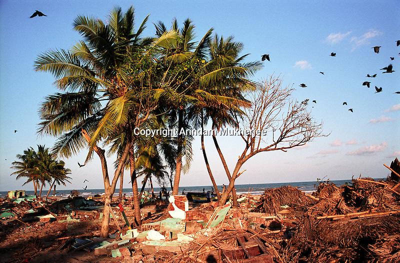 Debris in a beach in Nagapattinam.India.