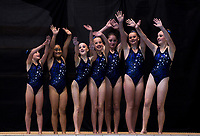 The Wellington Synchro dolphins combo team. Day Two of the 2018 North Island Synchronised Swimming Championships at Wellington Regional Aquatics Centre in Wellington, New Zealand on Sunday, 20 May 2018. Photo: Dave Lintott / lintottphoto.co.nz