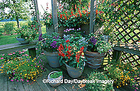 63821-04312 Container garden on deck for butterflies and hummingbirds Marion Co. IL