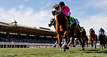 November 2, 2019: Belvoir Bay, ridden by Javier Castellano, wins the Breeders' Cup Turf Sprint on Breeders' Cup World Championship Saturday at Santa Anita Park on November 2, 2019: in Arcadia, California. Alex Evers/Eclipse Sportswire/CSM