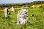 The Merry Maidens prehistoric stone circle,  St Buryan, Cornwall, England, UK
