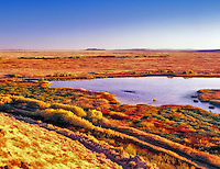 Pond with fall colors. Malheur National Wildlife Refuge, Oregon.