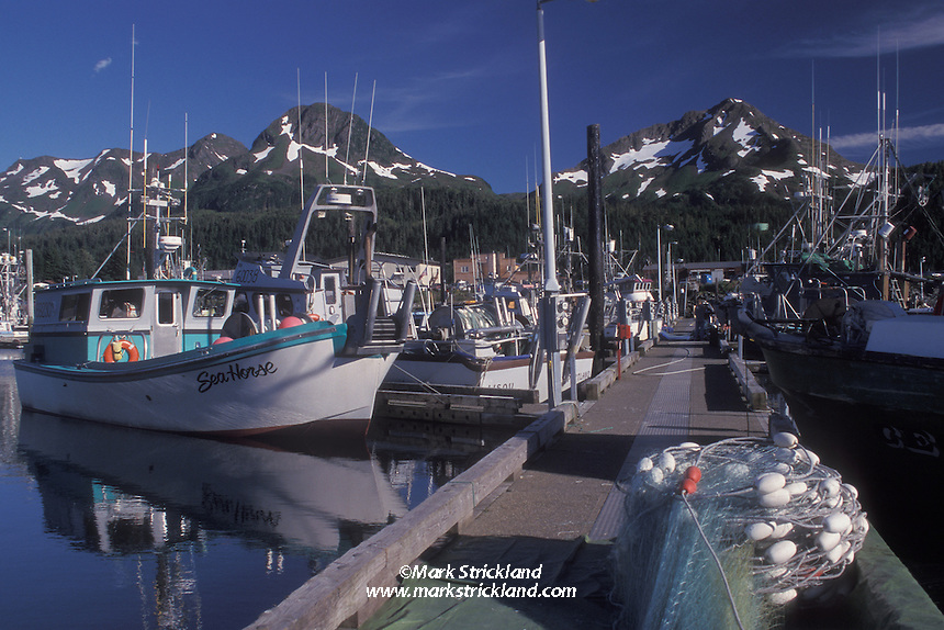 fishing boats secured to floating docks in Cordova, surrounded by snow-capped peaks. Cordova, Prince William Sound, Alaska, USA