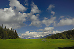 Clouds, mountains green pasture, Pitztal valley, the Tyrol, Austria,The Alps