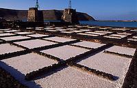 Spanien, Kanarische Inseln, Lanzarote, Saline zur Meersalzgewinnung in Janubio