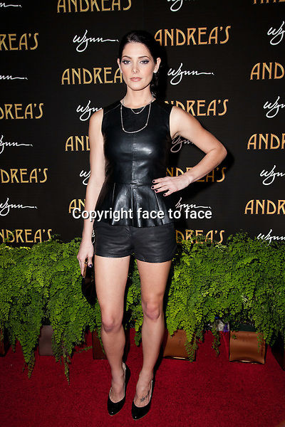 Ashley Greene pictured at the grand opening of Andrea's at Encore at Wynn Las Vegas in Las Vegas, Nevada on January 16, 2013. ..Credit: MediaPunch/face to face..- Germany, Austria, Switzerland, Eastern Europe, Australia, UK, USA, Taiwan, Singapore, China, Malaysia and Thailand rights only -