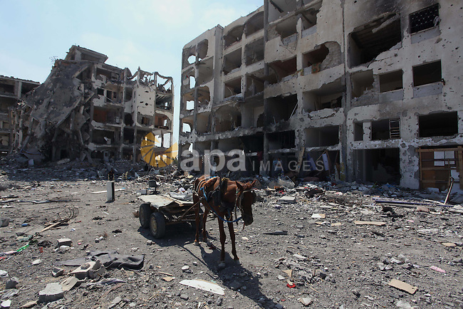 A picture taken on August 11, 2014 in Beit Lahia in the northern Gaza Strip shows a donkey cart in front of the destroyed Nada Towers as Palestinians return to the area to inspect what remains of their homes during a 72-hour ceasefire observed in the Gaza Strip. Almost 12 hours into the truce, the skies over Gaza remained calm, with no reports of violations on any side and signs of life emerging on the streets of the war-torn coastal enclave which is home to 1.8 million Palestinians. Photo by Ashraf Amra