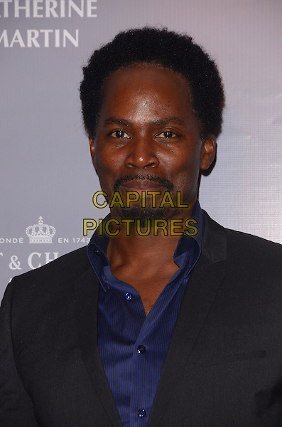 28 February 2014 - Los Angeles, California - Harold Perrineau. Arrivals for the Rodeo Drive Walk of Style honoring Catherine Martin at Greystone Mansion in Los Angeles, Ca.<br /> CAP/ADM/BT<br /> &copy;Birdie Thompson/AdMedia/Capital Pictures