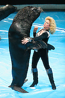 I am the Walrus?back in the U.S.S.R.! A seal bull dancing a waltz with his keeperess at the Old National Circus.