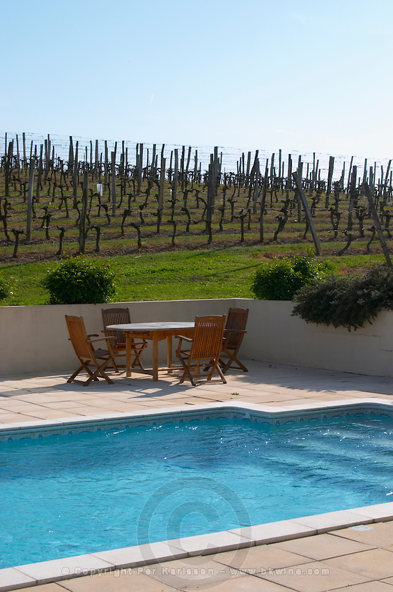 vineyard pool chateau pey la tour bordeaux france