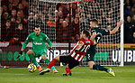 Martin Dubravka of Newcastle United saves from Billy Sharp of Sheffield Utd during the Premier League match at Bramall Lane, Sheffield. Picture date: 5th December 2019. Picture credit should read: Simon Bellis/Sportimage