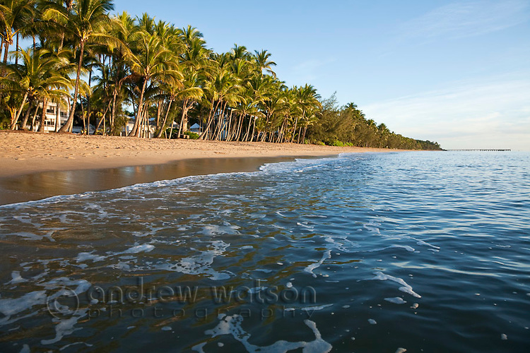 View along Palm Cove beach at dawn.  Palm Cove, Cairns, Queensland, Australia