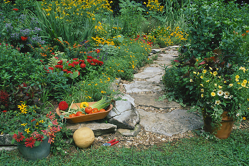 Path to vegetable garden through the flowers, harvest food and flowers in wooden bowl with garden tools, Missouri USA