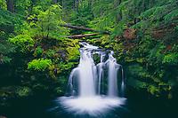 Whitehorse Falls<br /> Clearwater River<br /> Umpqua National Forest<br /> Cascade Range,  Oregon