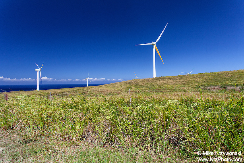 Windmills in a grassy field w/ ocean in background, north Kohala, Big Island, Hawaii