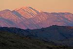 Sunrise light on Mt. San Gorgonio from Joshua Tree National Park, California