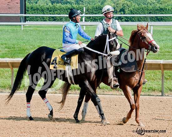 Petit Trianon before The Christiana Stakes at Delaware Park on 7/10/13