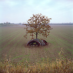Autumn landscape near Parma, ITALY