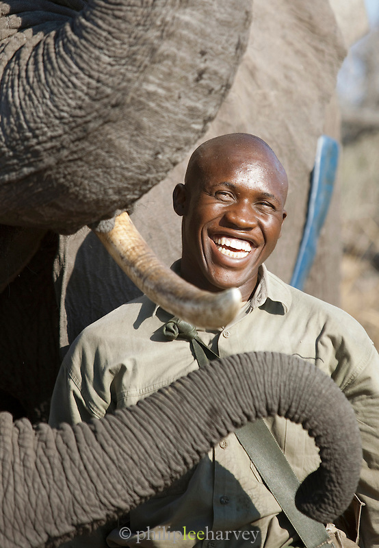 A mahout, an elephant trainer, with his elephant in the Okavango Delta, Botswana