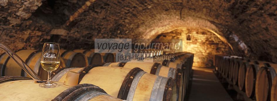 Europe/France/Bourgogne/89/Yonne/Chablis: cave de la Providence de Benoit Droin vigneron - AOC Chablis - Barriques de vin blanc au chai