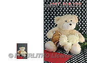 Alfredo, FLOWERS, BLUMEN, FLORES, photos+++++,BRTOLP19432,#F# ,teddy bears