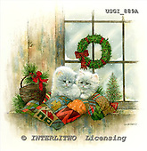 GIORDANO, CHRISTMAS ANIMALS, WEIHNACHTEN TIERE, NAVIDAD ANIMALES, paintings+++++,USGI889A,#XA#